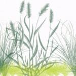 Рисувай трева с лекота