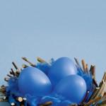 Гнездо за великденски яйца