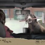 19 реклами, които ще те накарат да се замислиш
