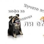 Не ползвайте кучето си за кофа