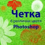 Четка за 6 различни цветя