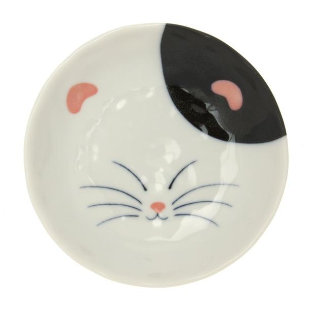 cat in a plate 10