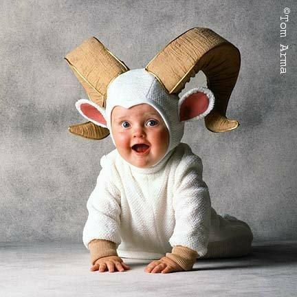 halloween baby costumes 8