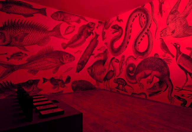 RGB exhibition 3