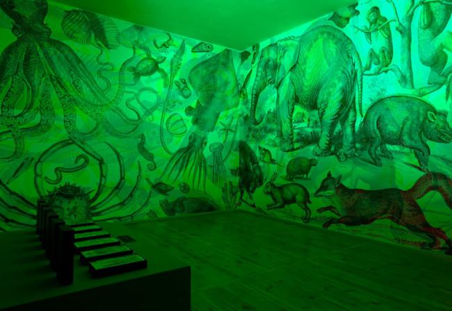 RGB exhibition 4