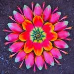 Направете си сами мандали от цветя