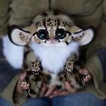 Забележително реалистични фантастични кукли
