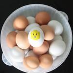 Лего великденски яйца