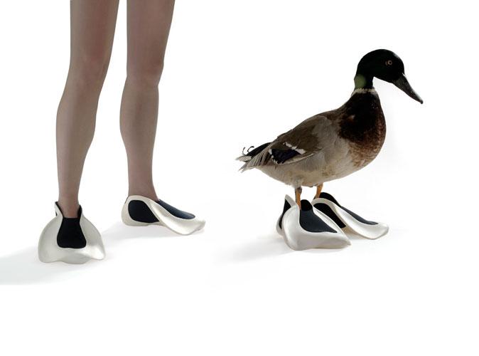 Duckfins 2