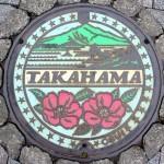 Flowers-Takahama