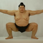Sumo147