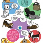 different-languages-expressions-illustrations-james-chapman-8