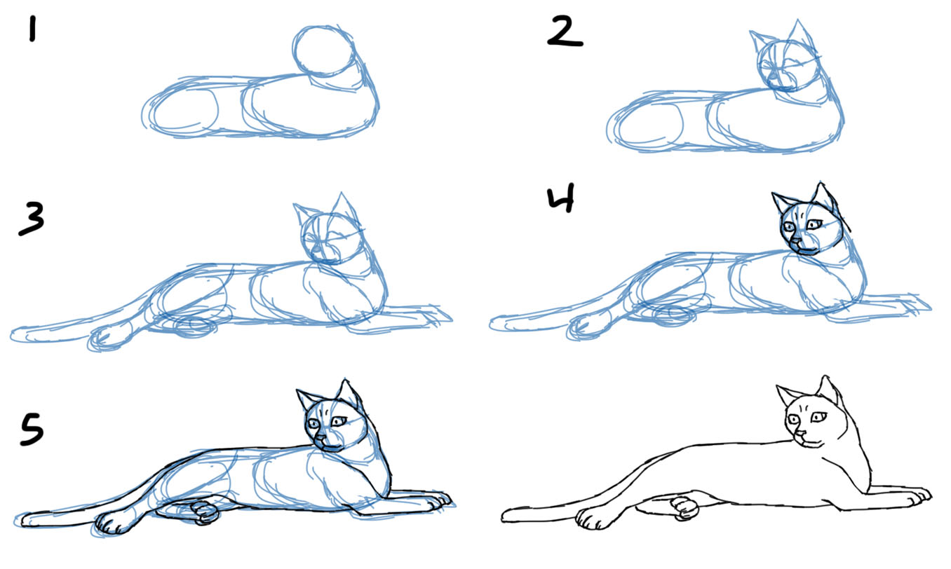 HowToDrawCatBodiesLaying