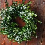 HelloHomeShoppe-Poppytalk-Mini-Wreath-Wreath