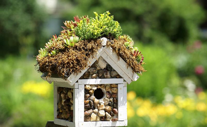 birdhouse_best