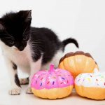donut-painted-pumpkins