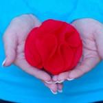 Парти роза от филц