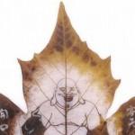 Картини върху есенни листа