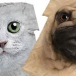 Тениски с кучета и котки
