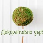 Направете си декоративно дръвче за дома