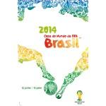 2014 FIFA 2