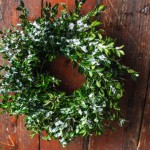 HelloHomeShoppe-Poppytalk-Mini-Wreath-Wreath